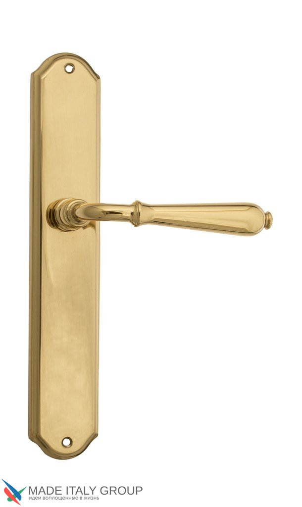 Door Handle Venezia  CLASSIC  On Backplate PL02 Polished Brass