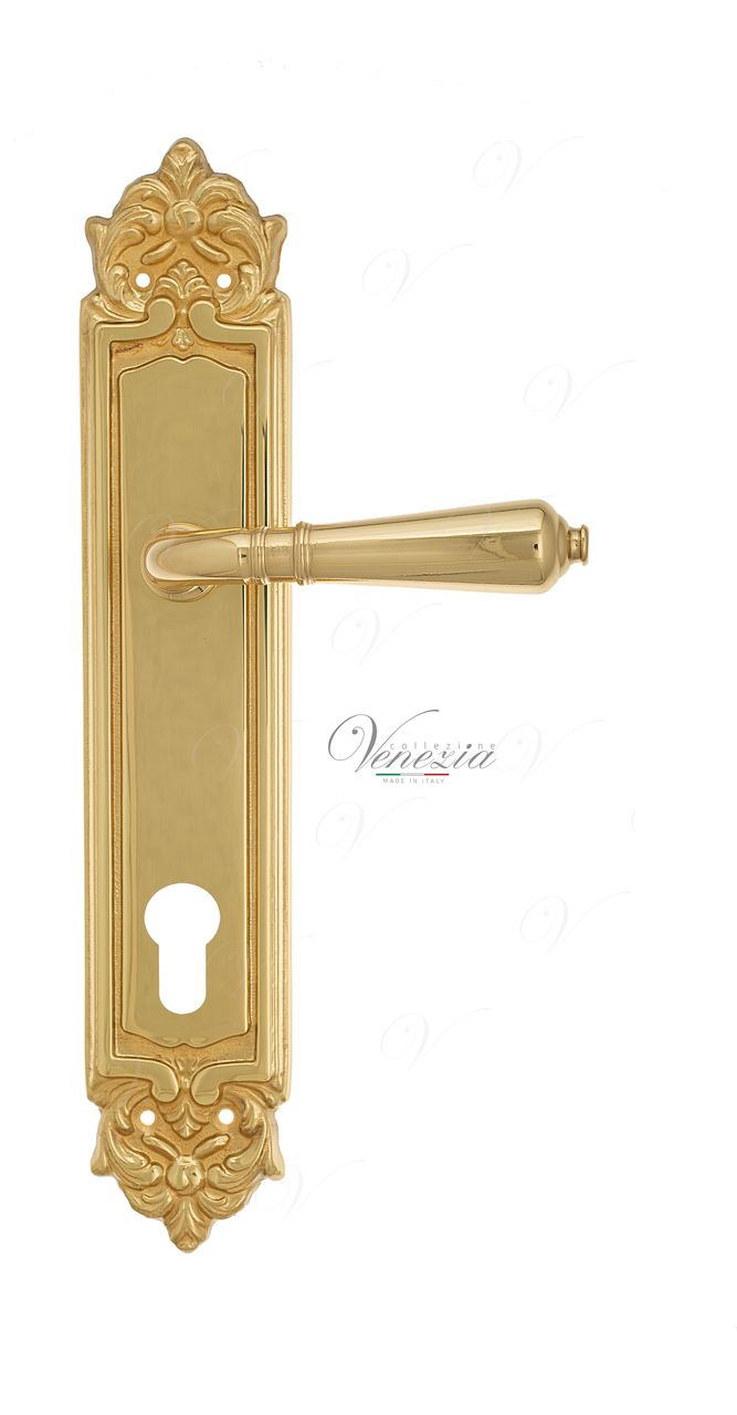 Door Handle Venezia  VIGNOLE  CYL On Backplate PL96 Polished Brass