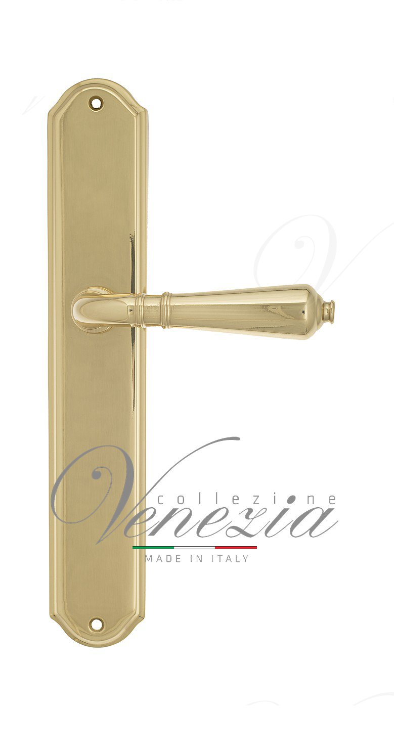 Door Handle Venezia  VIGNOLE  On Backplate PL02 Polished Brass